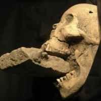4018369399-tengkorak-vampir-wanita-ditemukan-di-italia